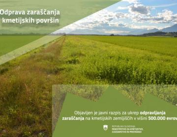 Odprava zaraščanja kmetijskih površin